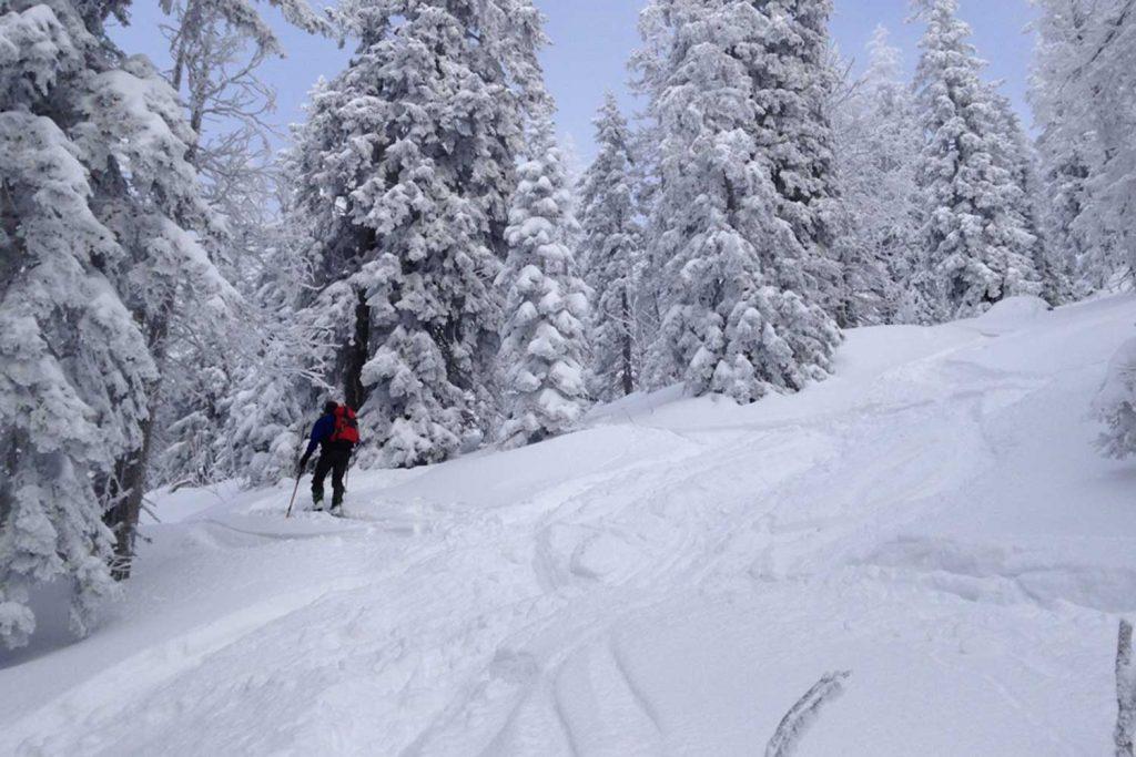 Skitour-für-Einsteiger-in-den-Chiemgauer---Am-Spitzstein