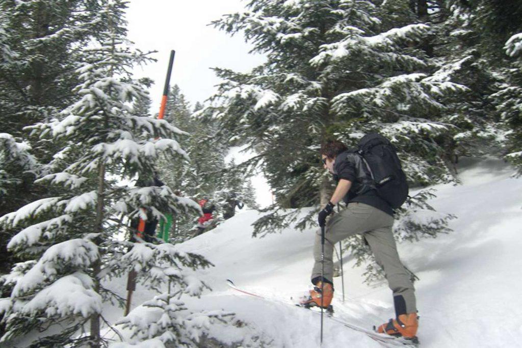 Skitour-für-Einsteiger-in-den-Chiemgauer---Am-Weg-zum-Feichteck