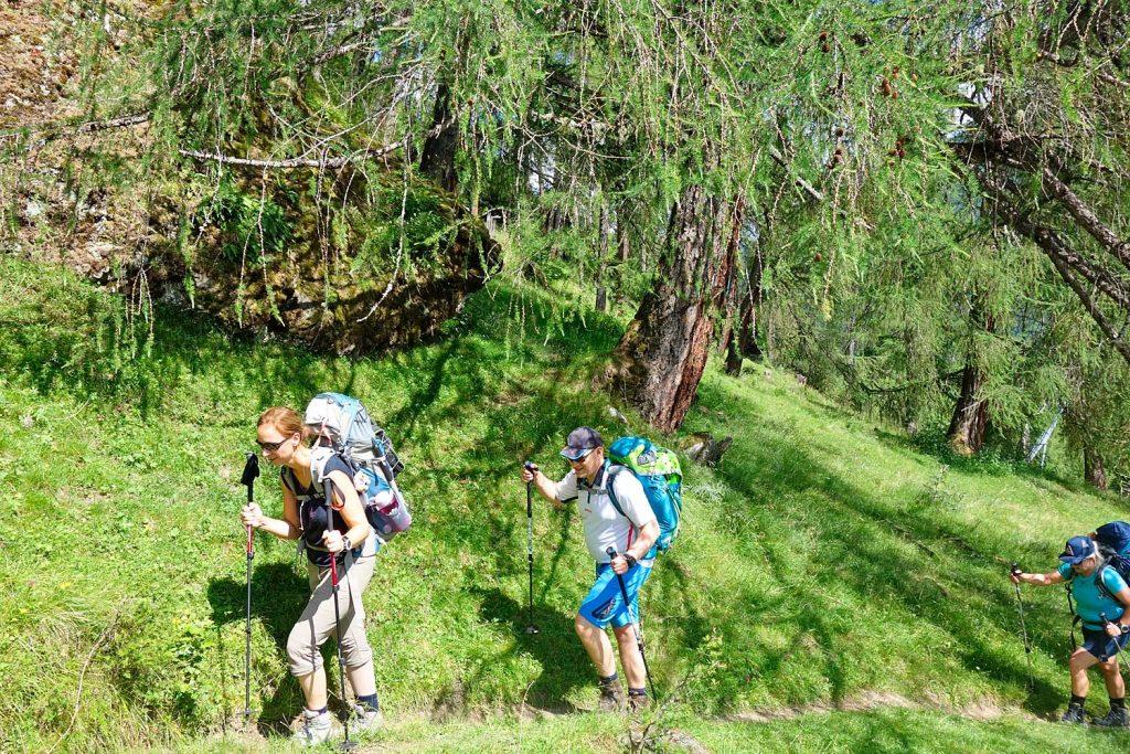 Auf-dem-Stubaier-Höhenweg-zum-Habicht---Wandern-in-Lerchenwäldern