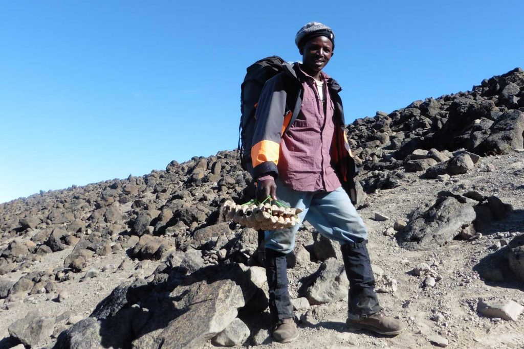 Kilimanjaro---Lemosho-Route---Alpine-Wüste---mit-zerbrechlicher-Fracht