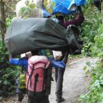 Kilimanjaro----Lemosho-Route---Träger-im-Regenwald