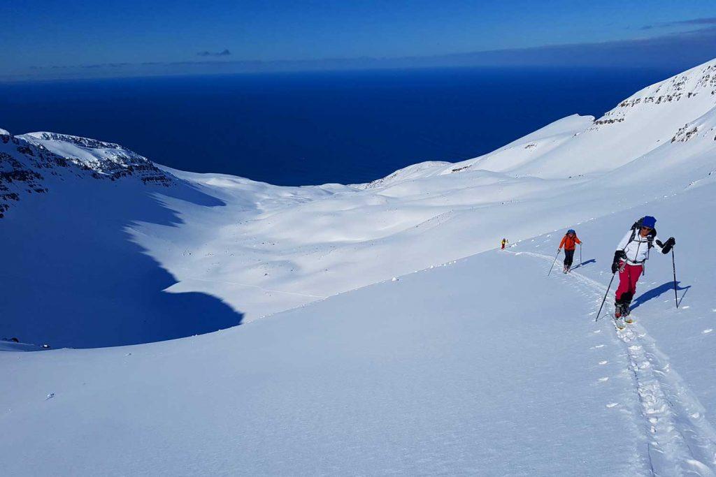 Skitouren-in-Island----Skitour-auf-Island