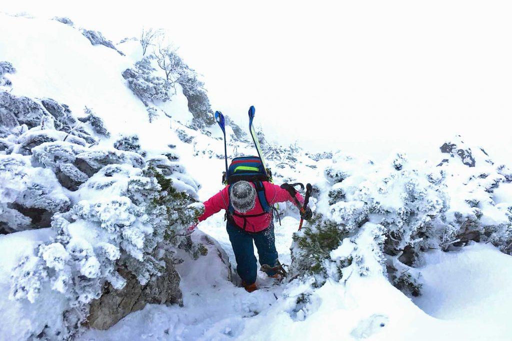 Winterbergsteigen---Skibergsteiger-beim-Gipfelanstieg