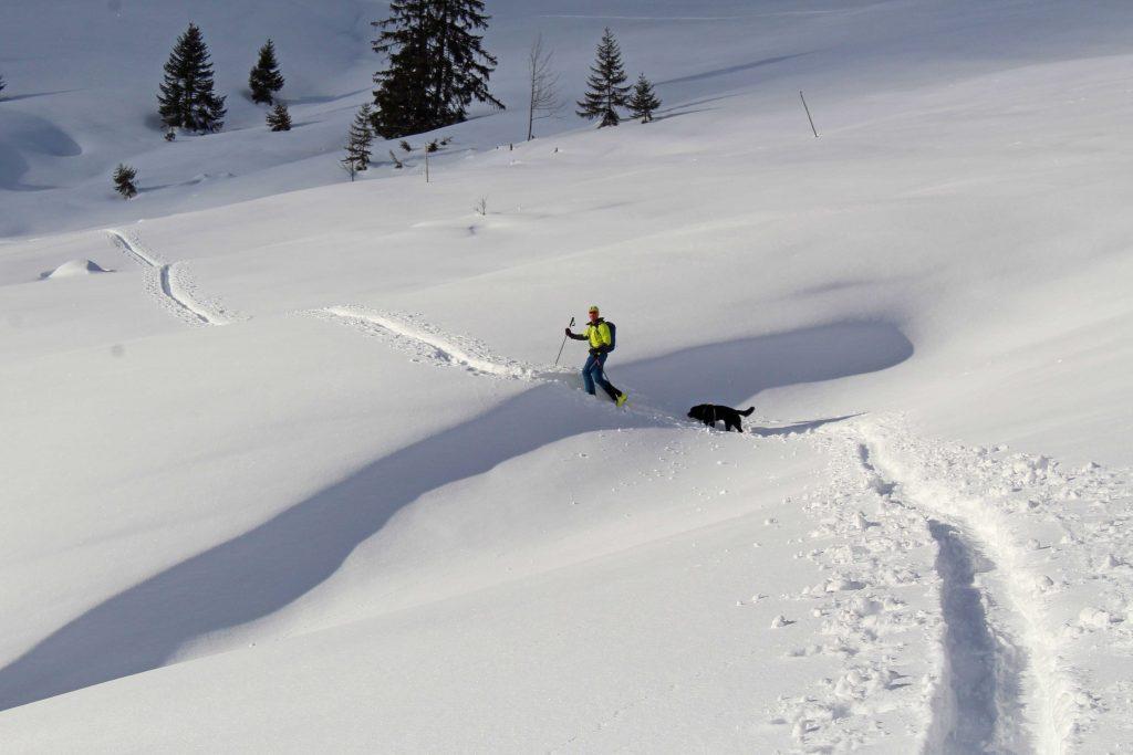 Skitour-Bayerische-Alpen---Aufstieg-Wildalpjoch