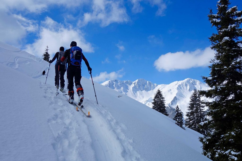 Skitour-in-den-Kitzbüheler-Alpen---Aufstieg-Wildkarspitze