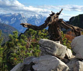 Dürnbachhorn-Nordrunde---perfektes-Gipfelkreuz-mit-Hocheis-im-Hintergrund