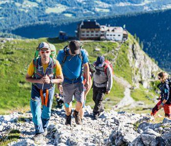Wanderung----Watzmann-König-der-Berchtesgadener-Am-Weg-mit-Blick-zum-Watzmannhaus
